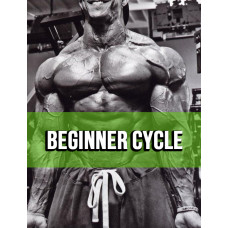 Beginner Cycle